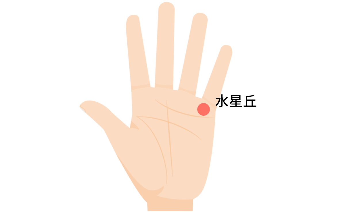 水星丘小指の下の基本初心者でも分かるイラストで手相の見方を解説
